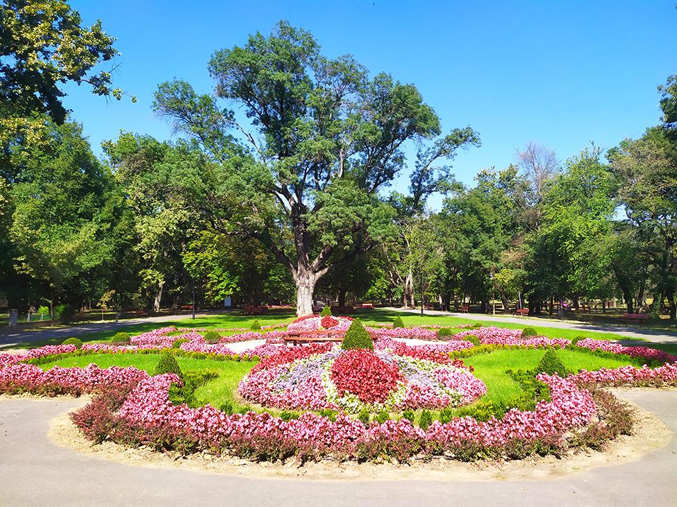 Banja Kanjiža, banjski park
