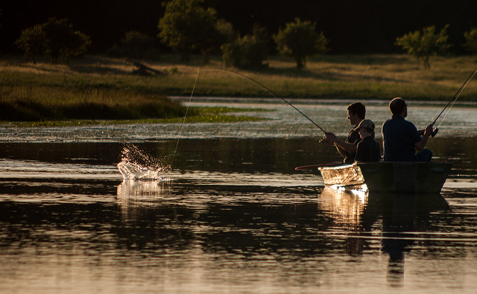 Ribolov na Drini