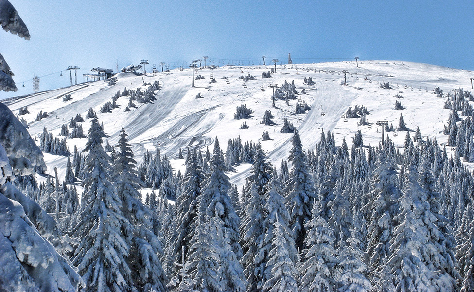 Ski staza Pančićev vrh na Kopaoniku
