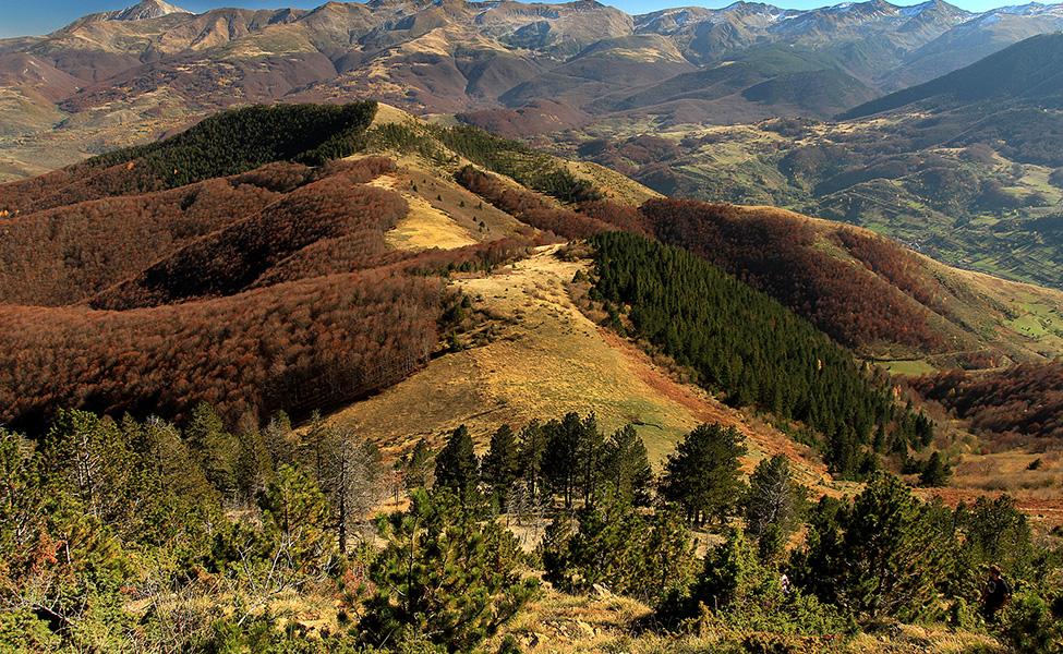 Pogled na Šar- planinu