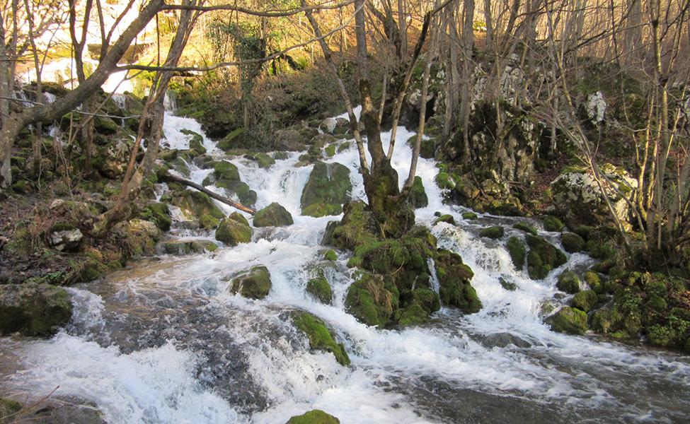 Vrelo reke Grze