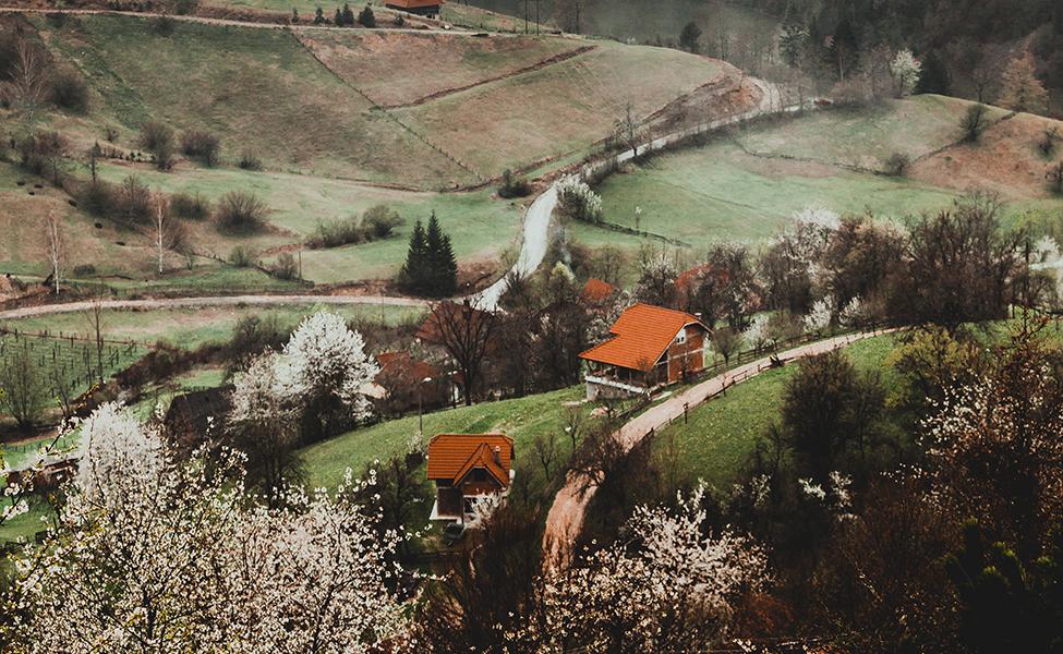 Planine u Srbiji , pogled na Taru