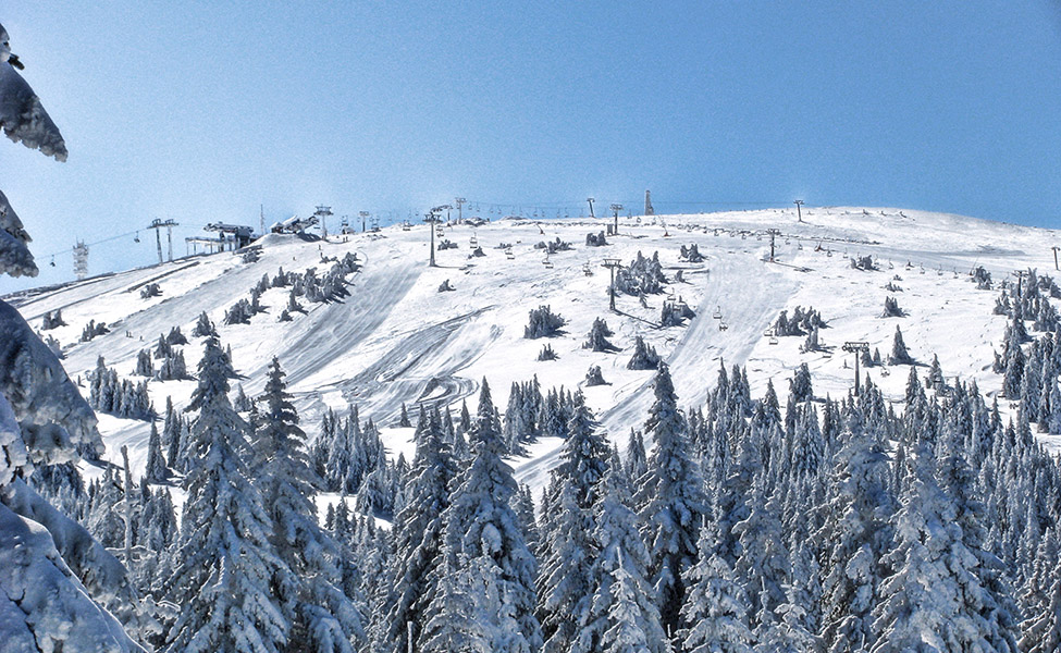 Ski staze na Kopaoniku- panorama