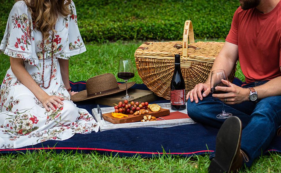 Piknik na travi sa vinom i grožđem