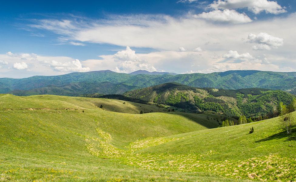 Planina Stolovi - pašnjaci