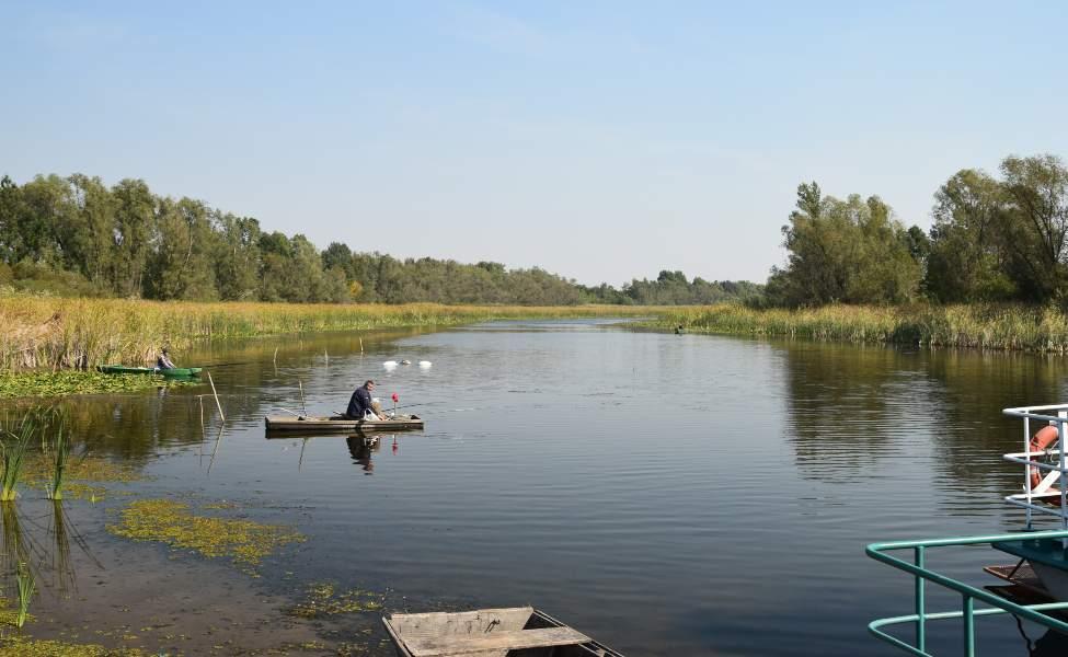 Čamac plovi po močvarnom području Zasavice