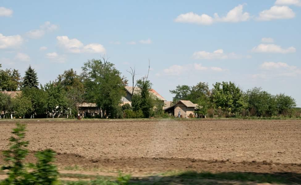 Plodna zemlja na salašu u Čeneju