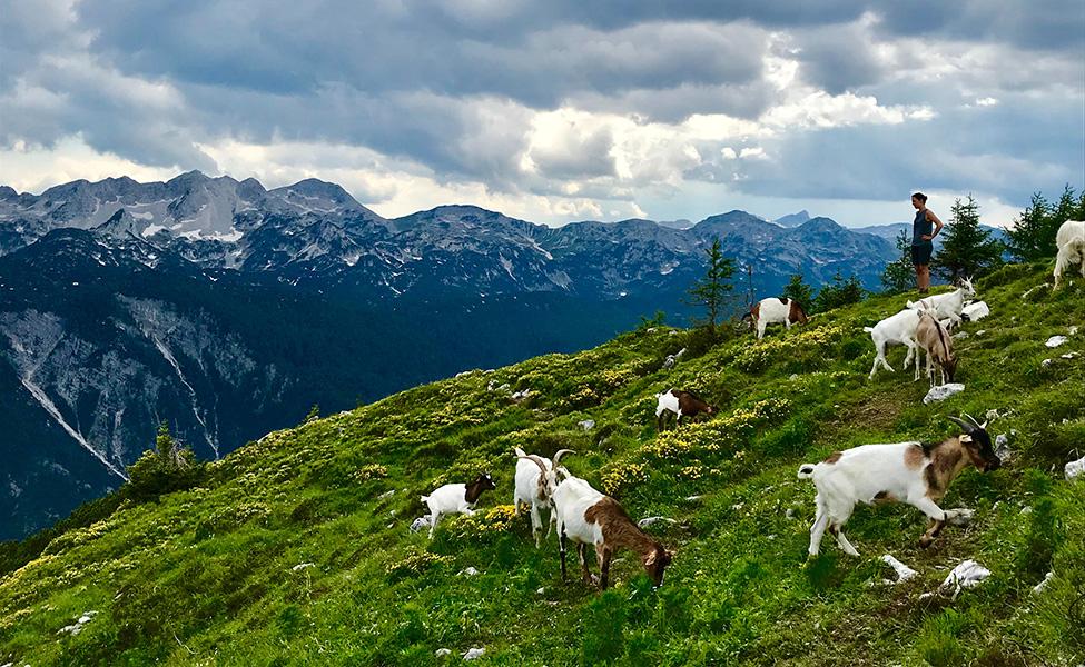 National park Triglav