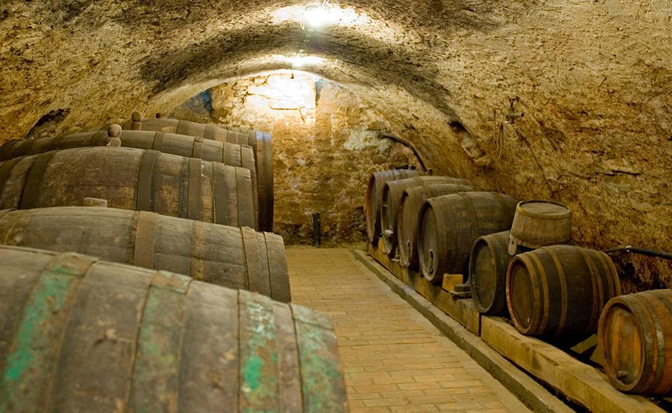 Vinski podrum sa buradima vina