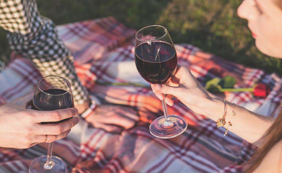 Piknik sa vinima i hranom