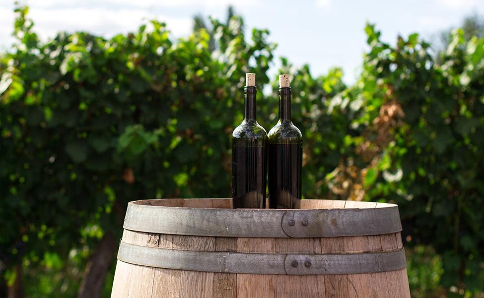 Vinsko bure sa vinskim bocama