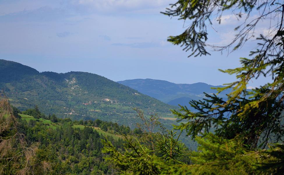 Panorama Golije