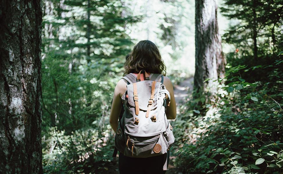 Planinarske ture
