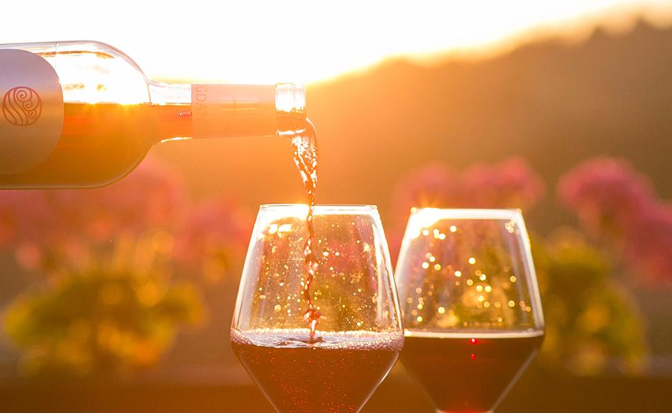 Vino i degustacija vina u vinskim čašama