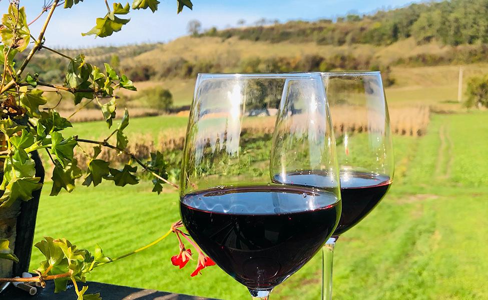 Crveno vino u vinskim čašama