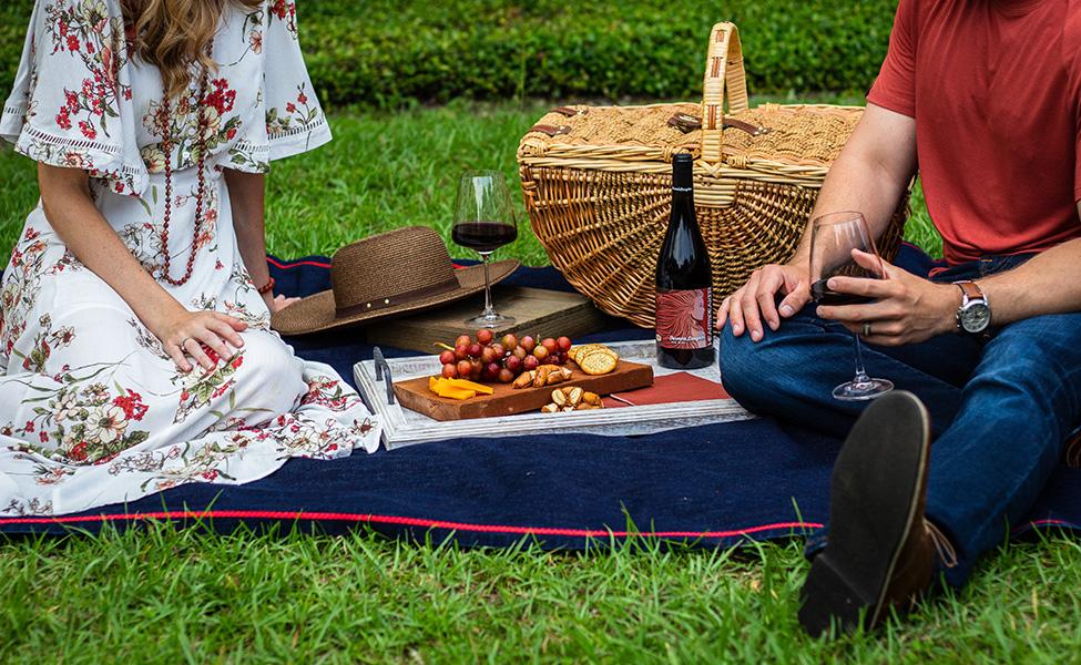Piknik u prirodi sa vinom i hranom