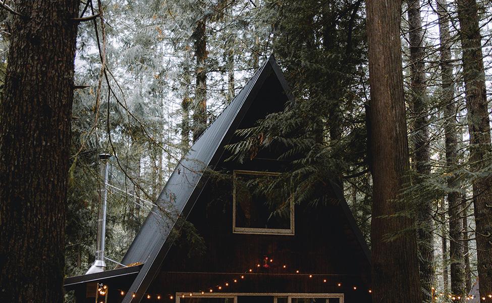 Brvnara među šumama