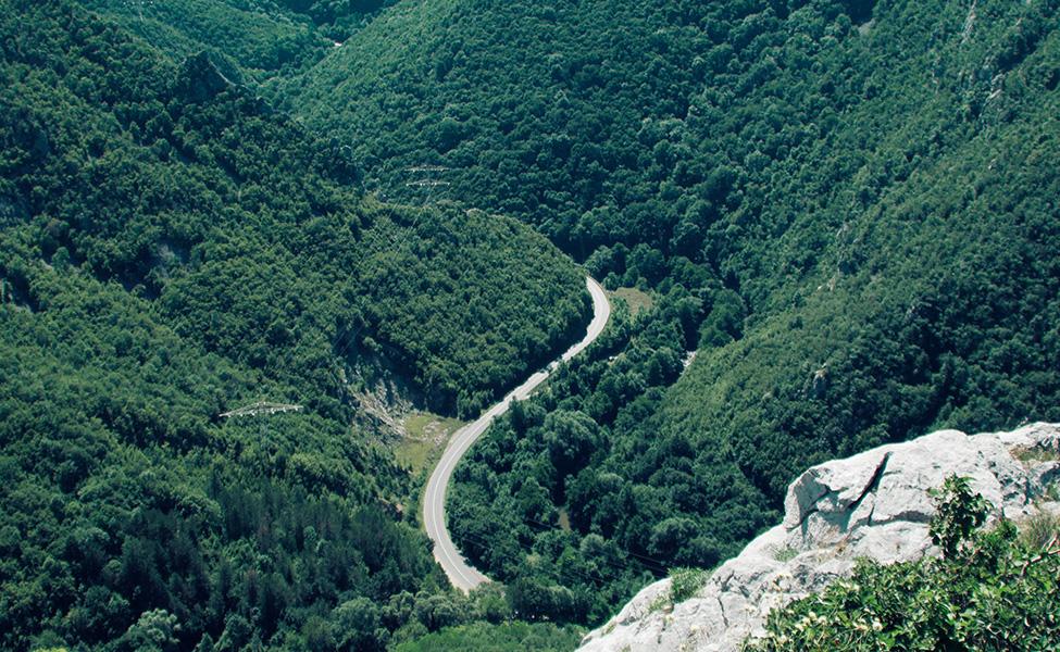 Put koji vodi kroz Homoljske planine