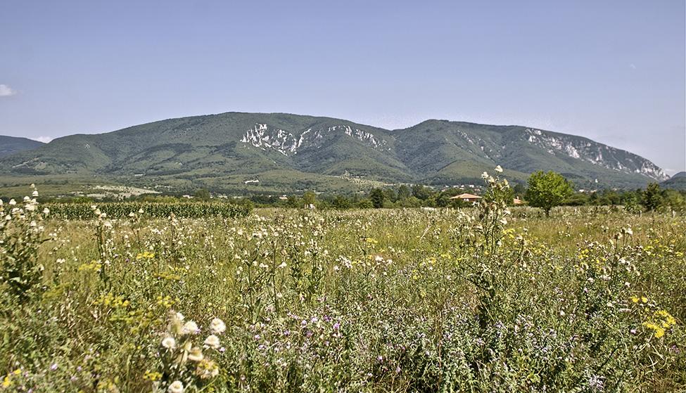 Homoljske planine- Veliki Vukan