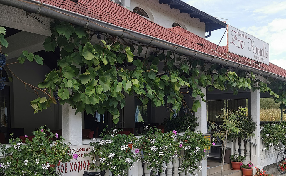 Restoran u Homolju, Zov Homolja