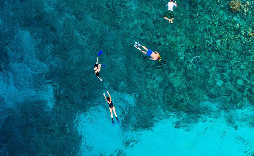 People go snorkeling