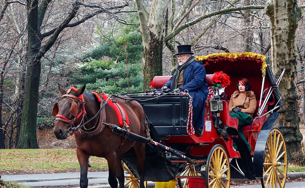 a Christmas carriage ride through Central Park
