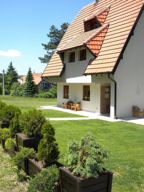 Nešović studio 4