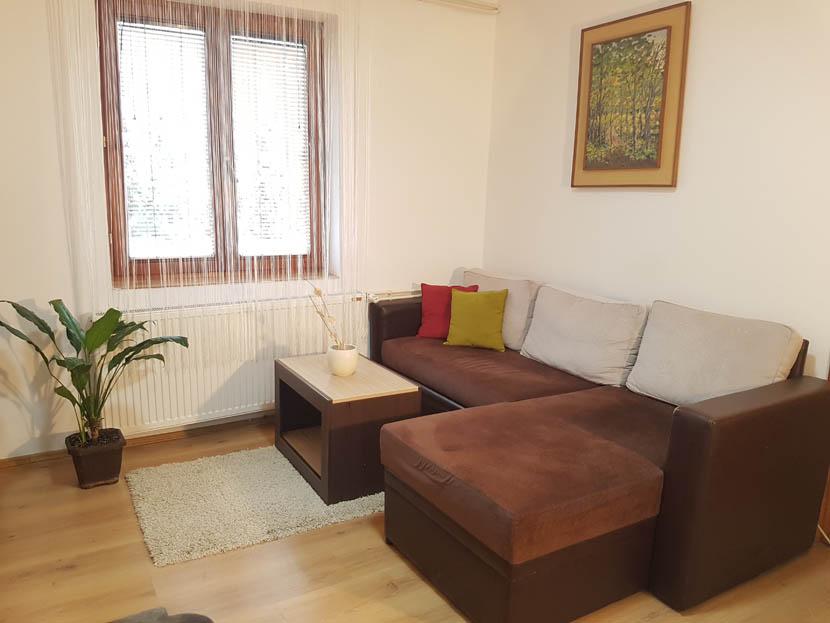 Nešović apartman 1
